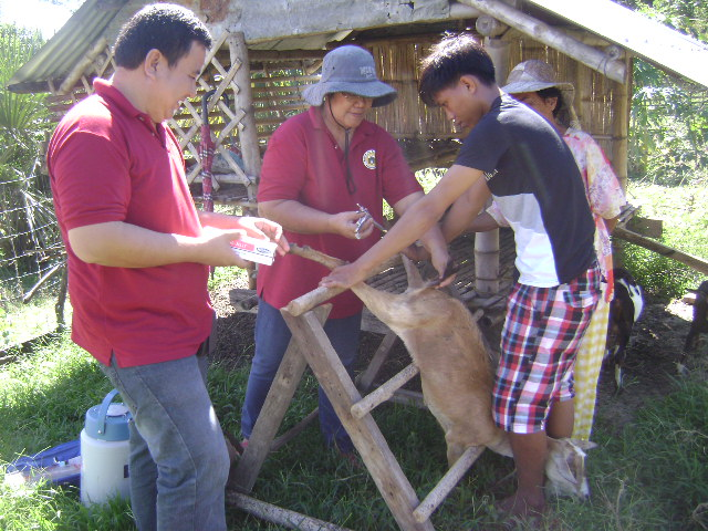 Village-Based Roll-out of Artificial Insemination Delivery System (3)