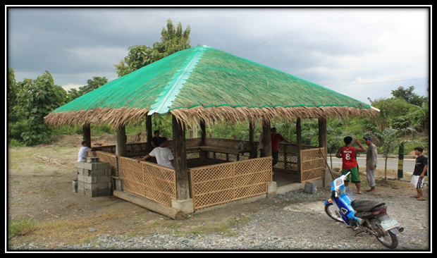 ADDITIONAL NIPA HUTS (2)