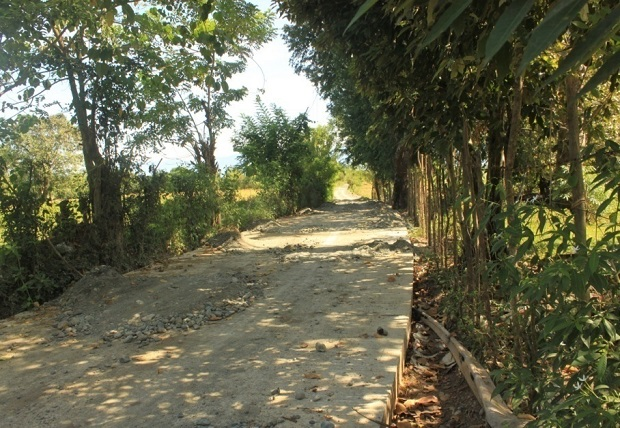 CONCRETING OF FARM TO MARKET ROAD AT BRGY. ESMERALDA ROAD (5)