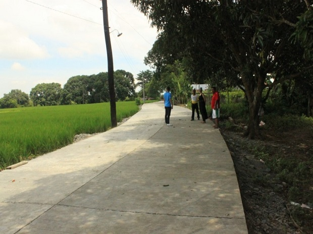 CONCRETING OF FARM TO MARKET ROAD AT BRGY. SAN MARCELINO (4)