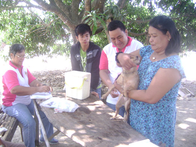 anti-rabies-vaccination-1