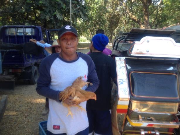 free-range-chicken-dispersal-under-agri-pinoy-livestock-banner-program-3