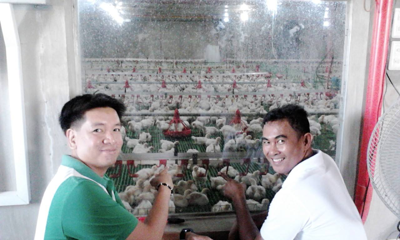 poultry-inspection-2