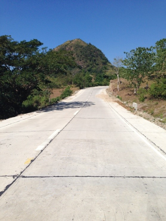 road-concreting-peralta-road-brgy-mabini-and-san-andres-section-4