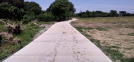 CONCRETING OF FARM TO MARKET ROADS