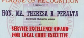 SERVICE EXCELLENCE AWARDEE FOR LOCAL CHIEF EXECUTIVE